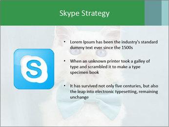 Beautiful white cat PowerPoint Template - Slide 8