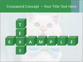 Beautiful white cat PowerPoint Template - Slide 82