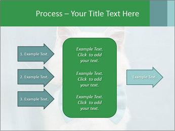 Beautiful white cat PowerPoint Template - Slide 85