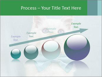 Beautiful white cat PowerPoint Template - Slide 87