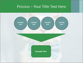 Beautiful white cat PowerPoint Template - Slide 93