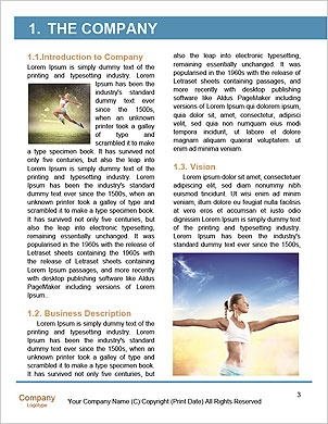 0000089906 Word Template - Page 3