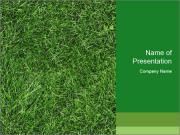 Gree Grass Texture PowerPoint Template