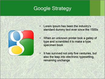 Gree Grass Texture PowerPoint Template - Slide 10