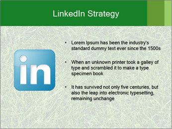 Gree Grass Texture PowerPoint Template - Slide 12