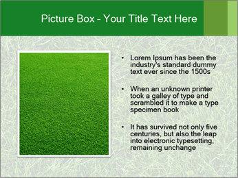 Gree Grass Texture PowerPoint Template - Slide 13