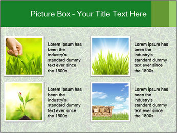 Gree Grass Texture PowerPoint Template - Slide 14