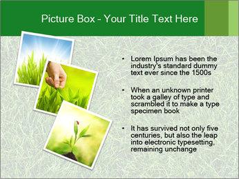 Gree Grass Texture PowerPoint Template - Slide 17