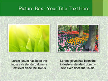 Gree Grass Texture PowerPoint Template - Slide 18