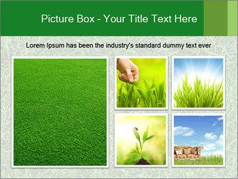 Gree Grass Texture PowerPoint Template - Slide 19