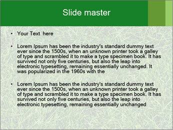Gree Grass Texture PowerPoint Template - Slide 2