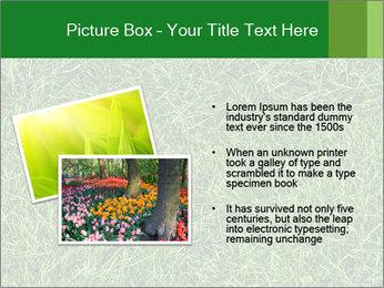 Gree Grass Texture PowerPoint Template - Slide 20