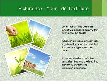 Gree Grass Texture PowerPoint Template - Slide 23