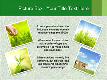 Gree Grass Texture PowerPoint Template - Slide 24