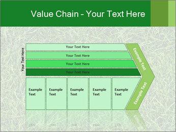 Gree Grass Texture PowerPoint Template - Slide 27
