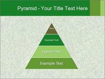Gree Grass Texture PowerPoint Template - Slide 30