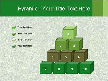 Gree Grass Texture PowerPoint Template - Slide 31