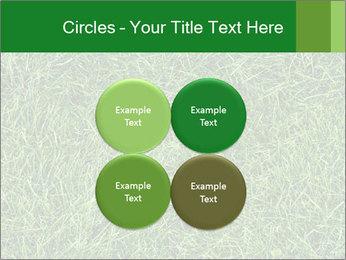 Gree Grass Texture PowerPoint Template - Slide 38