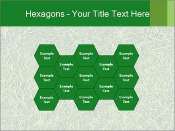 Gree Grass Texture PowerPoint Template - Slide 44