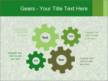 Gree Grass Texture PowerPoint Template - Slide 47