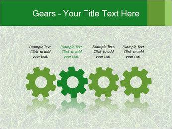 Gree Grass Texture PowerPoint Template - Slide 48