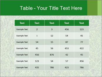 Gree Grass Texture PowerPoint Template - Slide 55