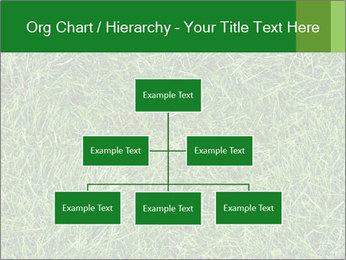 Gree Grass Texture PowerPoint Template - Slide 66