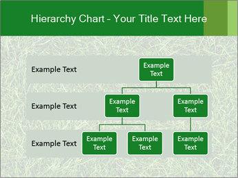 Gree Grass Texture PowerPoint Template - Slide 67