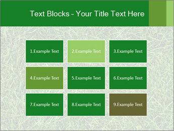 Gree Grass Texture PowerPoint Template - Slide 68