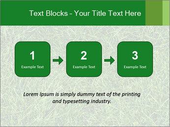 Gree Grass Texture PowerPoint Template - Slide 71