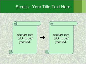 Gree Grass Texture PowerPoint Template - Slide 74