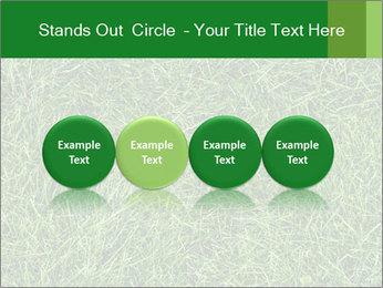 Gree Grass Texture PowerPoint Template - Slide 76