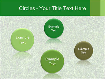 Gree Grass Texture PowerPoint Template - Slide 77