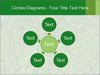 Gree Grass Texture PowerPoint Template - Slide 78