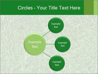Gree Grass Texture PowerPoint Template - Slide 79