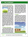 0000089911 Word Template - Page 3