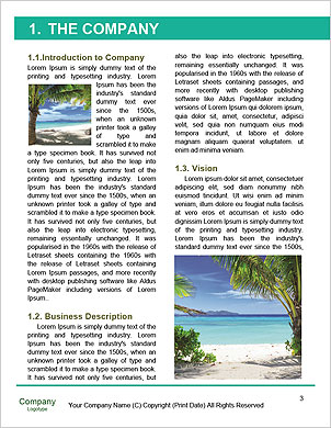 0000089912 Word Template - Page 3