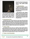 0000089916 Word Template - Page 4