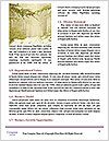 0000089931 Word Template - Page 4