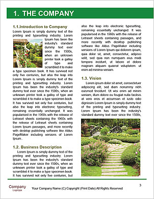 0000089945 Word Template - Page 3