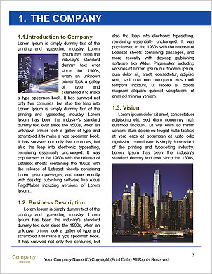 0000089949 Word Template - Page 3
