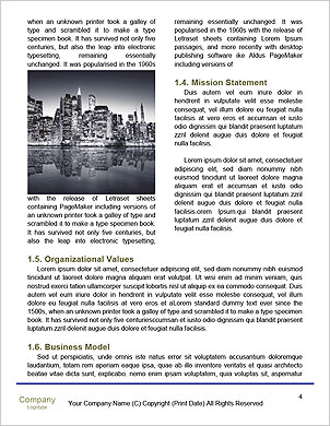 0000089949 Word Template - Page 4