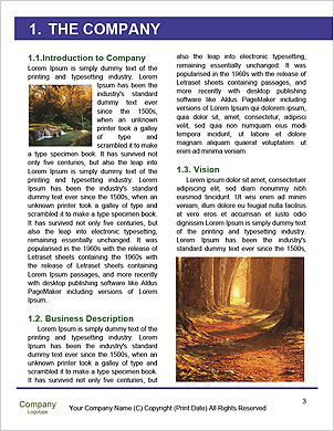0000089953 Word Template - Page 3