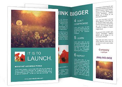 0000089956 Brochure Template