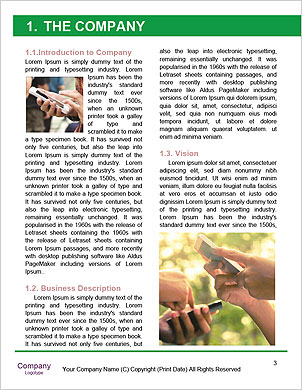 0000089981 Word Template - Page 3