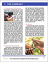 0000089982 Word Template - Page 3