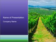 Agriculture In Italy PowerPoint Template
