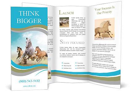 Three Beautiful Horses Running Brochure Template Design Id