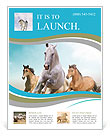 Three beautiful horses running Flyer Templates
