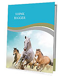 Three beautiful horses running Presentation Folder
